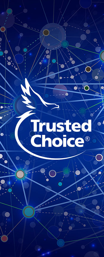 White Trusted Choice logo over blue network cloud of connections resembling stars in outer space.