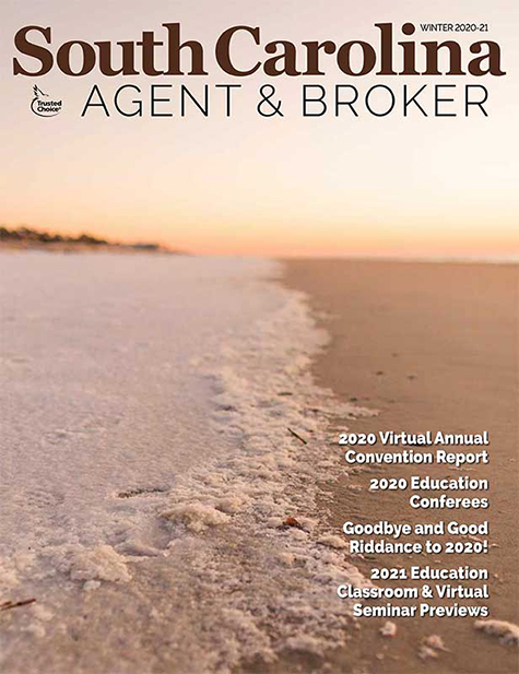 Cover features a snow-covered beach that appears to reverse the shoreline, with sand where the water normally is.