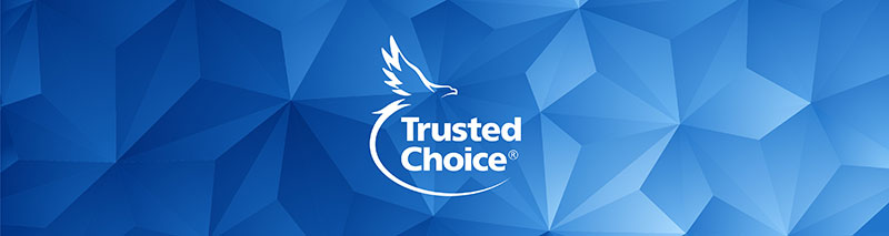 Trusted Choice logo on a long blue triangle background